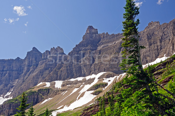 Jéghegy kövek gleccser természet hegyek festői Stock fotó © wildnerdpix