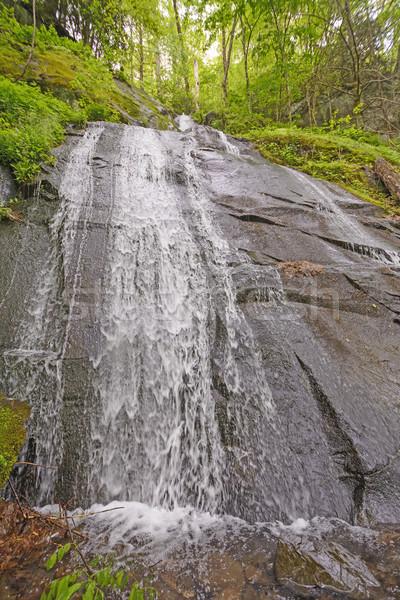 Bare Rock Falls in the Spring Stock photo © wildnerdpix