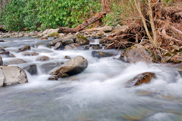 Mountain Stream in the Spring Stock photo © wildnerdpix
