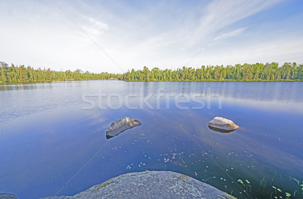 Early Morning Calm in the North Woods Stock photo © wildnerdpix