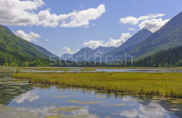 Wetland Lake in the Mountains Stock photo © wildnerdpix