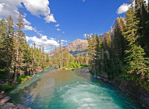 Mountain river in the Wilds Stock photo © wildnerdpix
