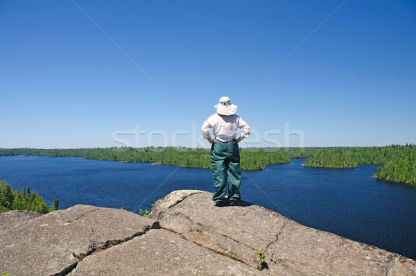 looking over the wilderness Stock photo © wildnerdpix