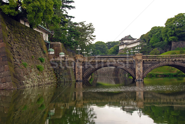 Imperial Palace in Tokyo Stock photo © wildnerdpix