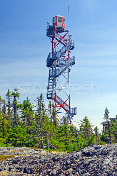 A Fire Lookout tower in the wilderness Stock photo © wildnerdpix