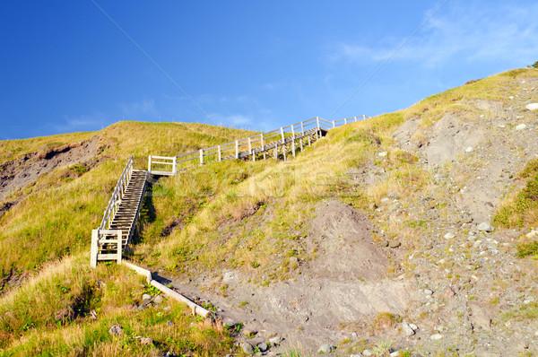 Lépcsőfeljáró tengerparti tengerpart zöld kertek természet Stock fotó © wildnerdpix