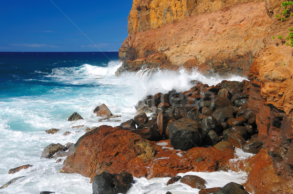 Crashing waves on rocks in Hawaii Stock photo © wildnerdpix