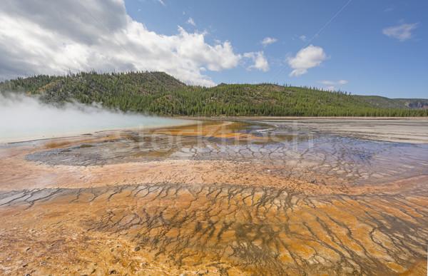Colorido primavera géiser parque Wyoming paisagem Foto stock © wildnerdpix