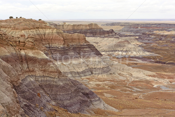 Colorful Ridges in the Painted Desert Stock photo © wildnerdpix