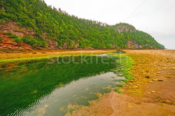Rivière faible marée nuageux jour point Photo stock © wildnerdpix