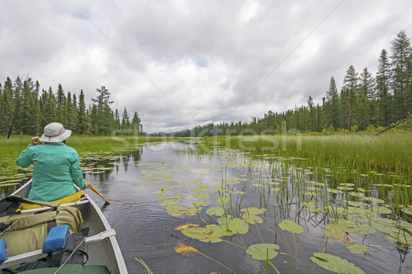 Canoeing Through Lily Pads on a Cloudy Day on a Quiet North Wood Stock photo © wildnerdpix