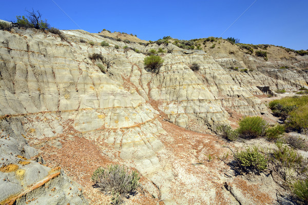 Badlands Escarpment in Summer Stock photo © wildnerdpix