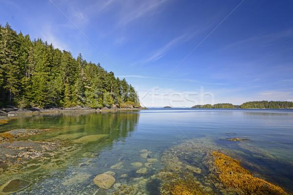 Verão dia norte costa Vancouver Foto stock © wildnerdpix