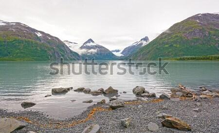 Lago nuvens prímula enseada Alasca água Foto stock © wildnerdpix