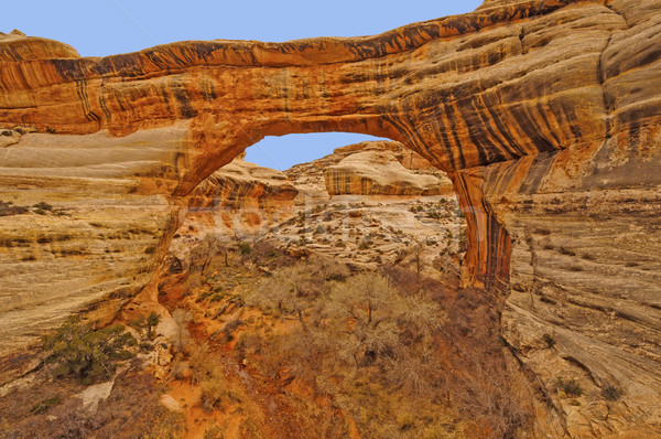 Natural Bridge in red rock country Stock photo © wildnerdpix