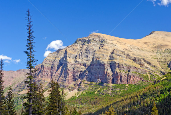 Rugged Escarpment in the American West Stock photo © wildnerdpix