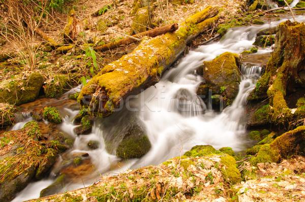 Montagne écouter printemps baisser crique magnifique Photo stock © wildnerdpix