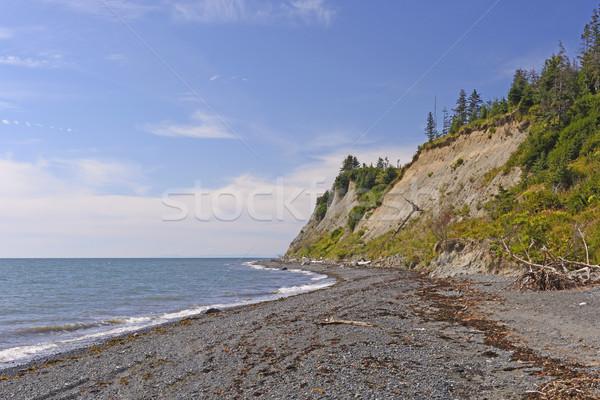 Távoli part napos idő természet óceán hullámok Stock fotó © wildnerdpix
