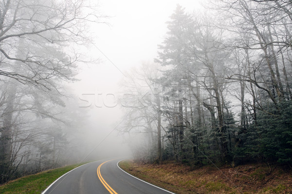 Ice Fog on a Mountain Road Stock photo © wildnerdpix