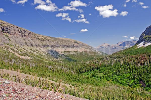 Western mountain valley in summer Stock photo © wildnerdpix