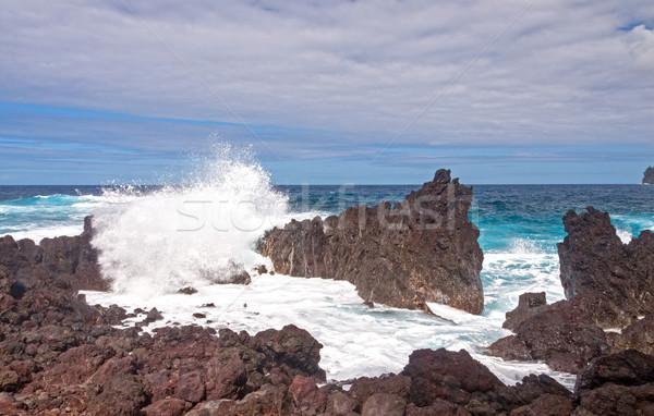 Crashing Waves on a Rocky Coast Stock photo © wildnerdpix