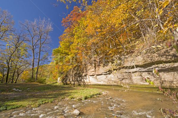 Herfstkleuren kalksteen klif rustig stream erwten Stockfoto © wildnerdpix