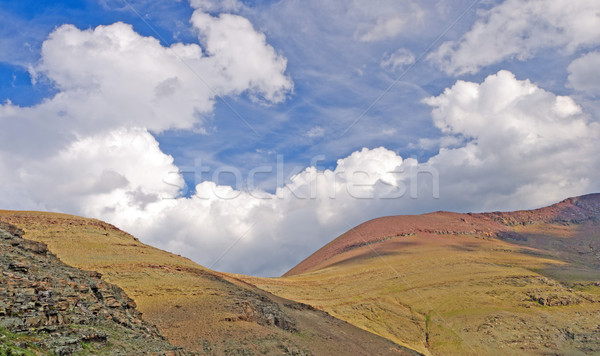 Afternoon clouds over a Mountain Pass Stock photo © wildnerdpix