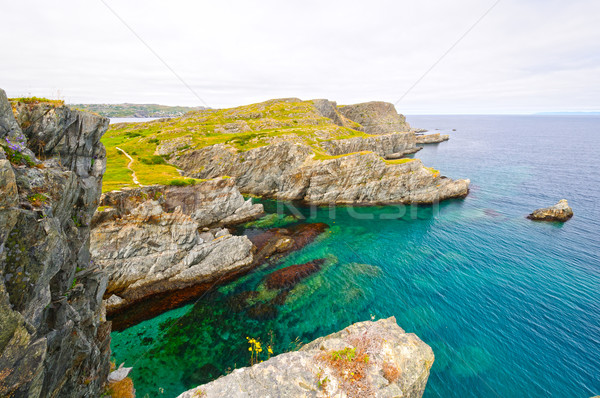 Dramatic Shoreline on an Ocean Coast Stock photo © wildnerdpix