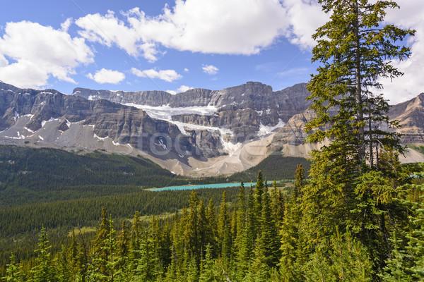 Canadian Rockies Panorama Stock photo © wildnerdpix