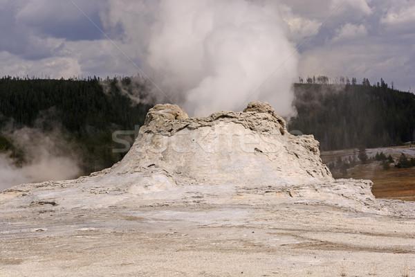 Stoom uitbarsting geiser kasteel park Wyoming Stockfoto © wildnerdpix