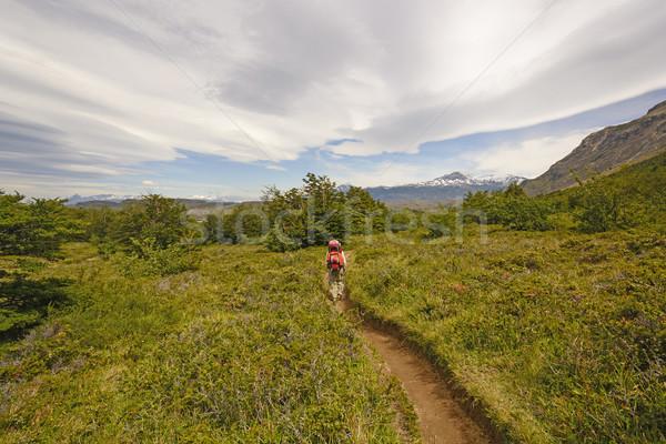 Wandelen hoogland vrouw natuur landschap park Stockfoto © wildnerdpix