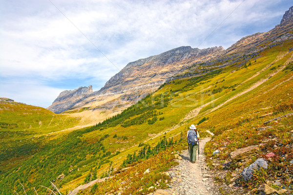 Hiker Heading into An Alpine Valley in the Fall Stock photo © wildnerdpix