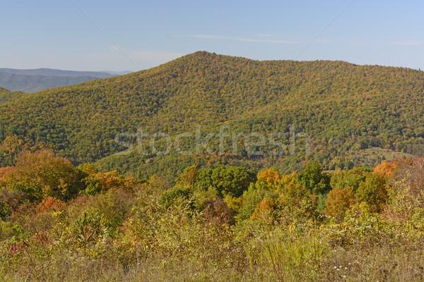 Changing Colors on a Mountain Ridge Stock photo © wildnerdpix