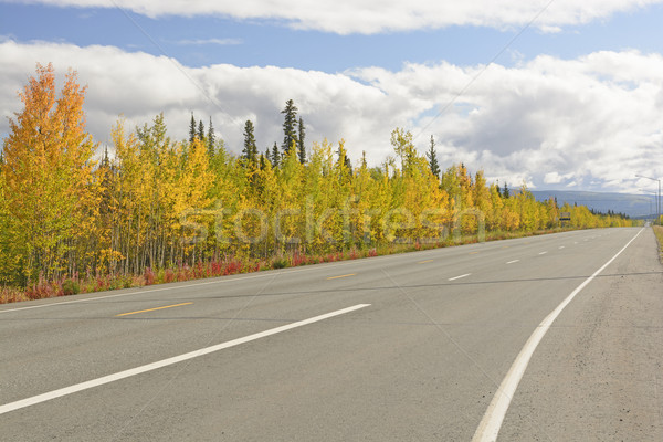 Couleurs d'automne Alaska autoroute paysage arbres couleurs Photo stock © wildnerdpix