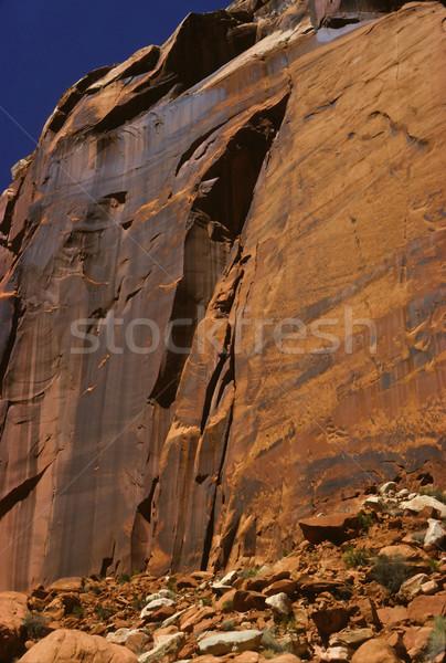 Czerwony skał pustyni piaskowiec Urwisko parku Zdjęcia stock © wildnerdpix