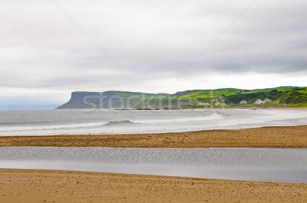 Waves and fog on an Irish Coastal Beach Stock photo © wildnerdpix