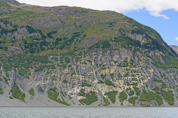 Eroded Mountain along a Glacial Fjord Stock photo © wildnerdpix