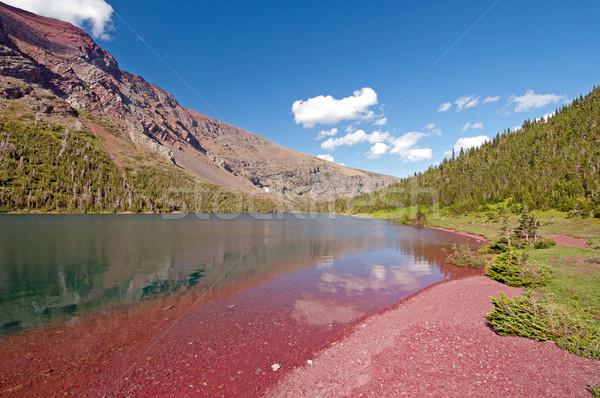 Red Rocks of the Rose Basin Stock photo © wildnerdpix