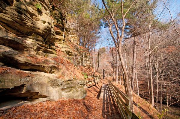Bluff Trail in the late fall Stock photo © wildnerdpix