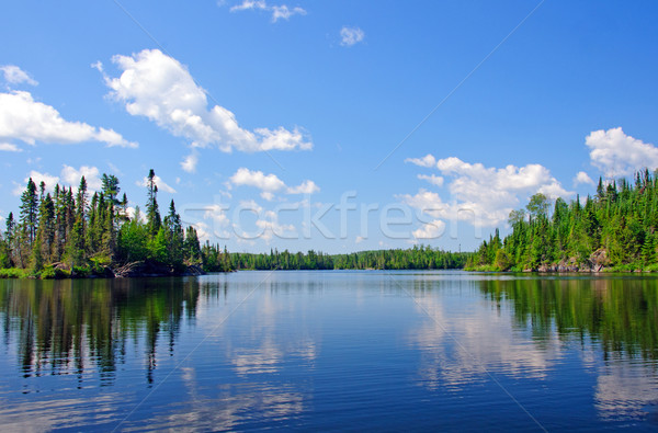 Summer in Canoe Country Stock photo © wildnerdpix