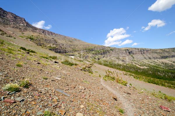 Trail through a high altitude scree slope Stock photo © wildnerdpix