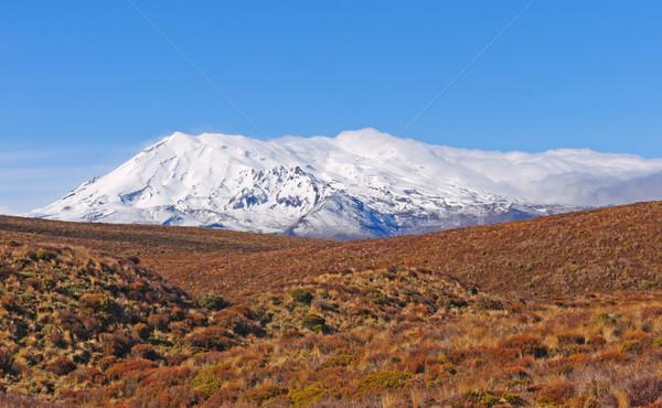 Snowy Volcano in Desert Lands Stock photo © wildnerdpix