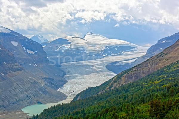 Alpino geleira verão saskatchewan parque Canadá Foto stock © wildnerdpix