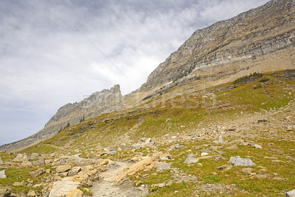 Magas fölött nyom gleccser park Montana Stock fotó © wildnerdpix