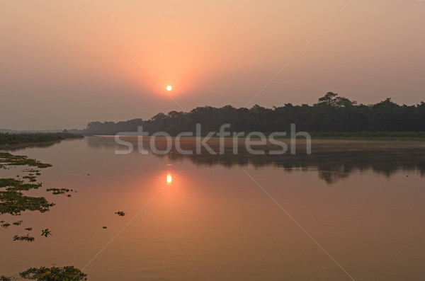 Sunrise on on a Quiet River Stock photo © wildnerdpix