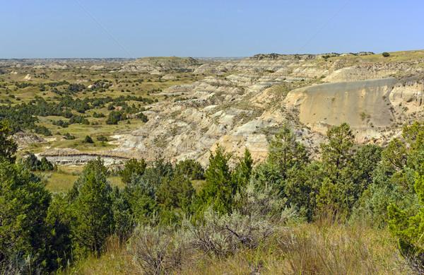 Panorama zomer dag park North Dakota natuur Stockfoto © wildnerdpix