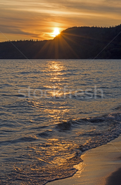 Golden Waves at Sunset Stock photo © wildnerdpix