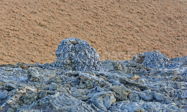 Black Spatter Cone against a Red Cinder Cone Stock photo © wildnerdpix