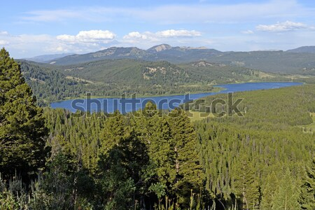 Remote Lake in the American West Stock photo © wildnerdpix