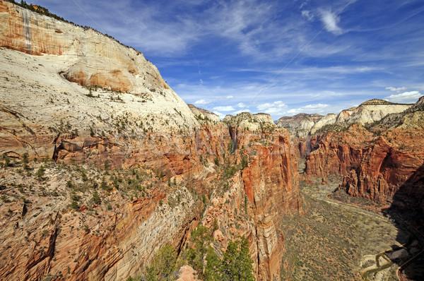 Canyon zuidwest engelen landing parcours Stockfoto © wildnerdpix